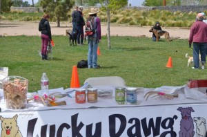 Lucky Dawg Booth at Paw Pageant 2015