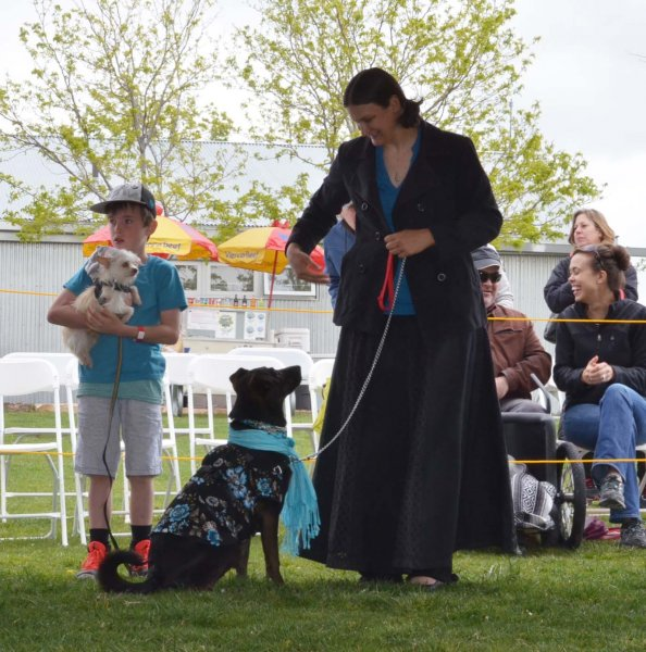 2 Paw Pageant in Santa Fe