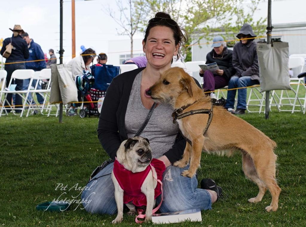 Dogs and their owners are having fun at Paw Pageant Dog Show