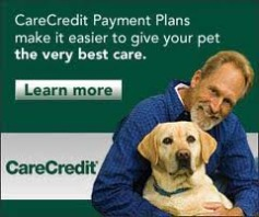 carecredit card, petangel santa fe nm