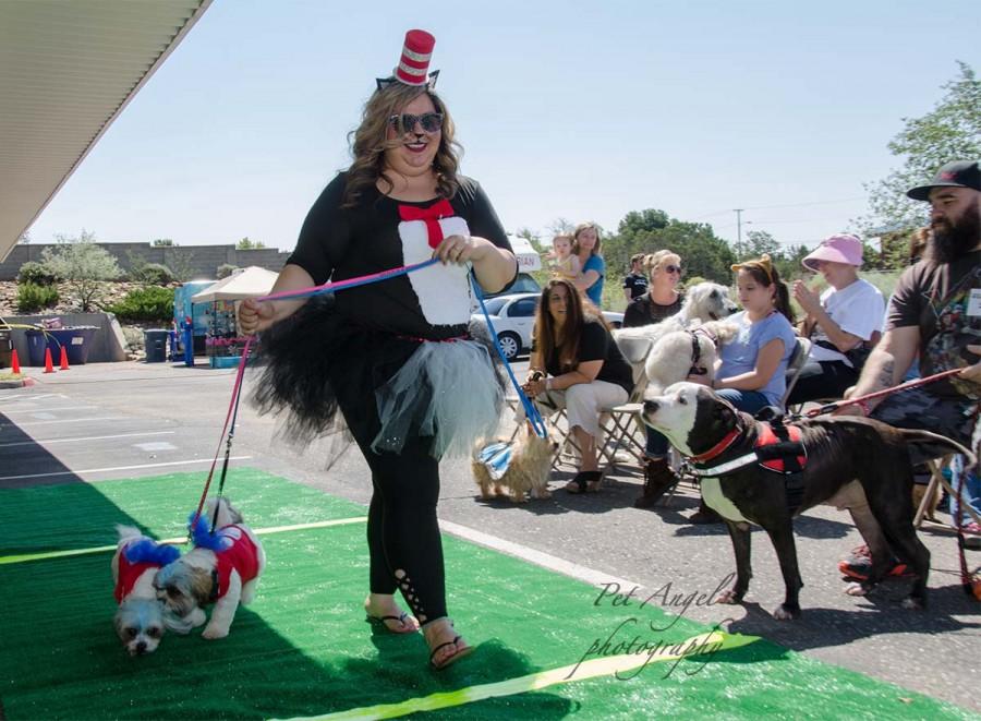 Dog adoption and Pet Parade, Woofstock 2018